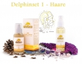 Delphinset 1 Basic - for all hair Yogana  / (Farbe) dunkel (Rosmarin)